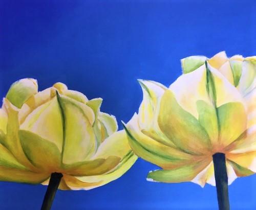 Tulpen Elly 2 63 kb kleur
