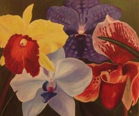 Orchideeen Cees